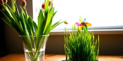 Ako na vždy zelenú jarnú dekoráciu
